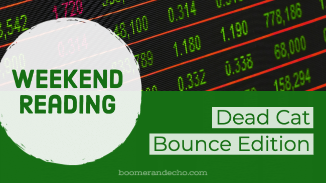 Weekend Reading: Dead Cat Bounce Edition